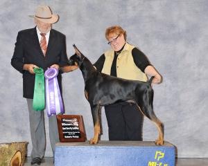 Reserve Winners Dog