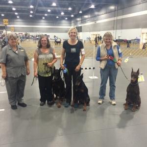 Jedi, Tucker and Diva all earned RAE legs!