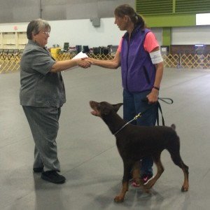 Barney earned his BN at 6 mths old.