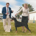 "GCH Heartwood's Dance With Me ""Elsie"" Owned by Juanita & Jeff Fagan Bred by Juanita & Jeff Fagan Earned in 2016 AKC Conformation - Grand Champion"