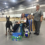 Tucker CD RAE OA OAJ OAP OJP NF OFP CGC ETD Owned by: Kathy and Andrew Koren Earned the following titles in 2016 AKC Rally-Rally Excellent AKC Agility- Open Preferred, Open Fast Preferred, Open JWW Preferred Tricks-Novice Trick Dog, Intermediate Trick Dog, Advance Trick Dog, Expert Trick Dog